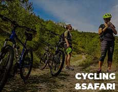 Cycling & Safari