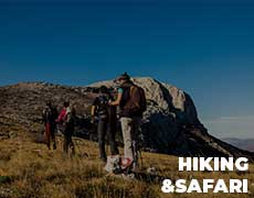 Hiking & Safari